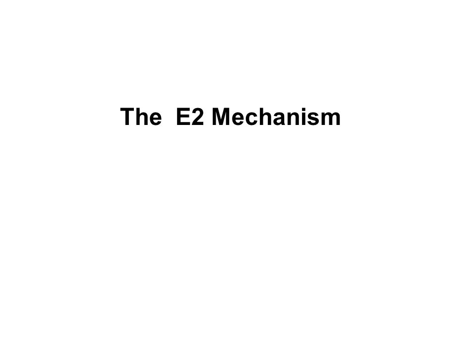 The E2 Mechanism