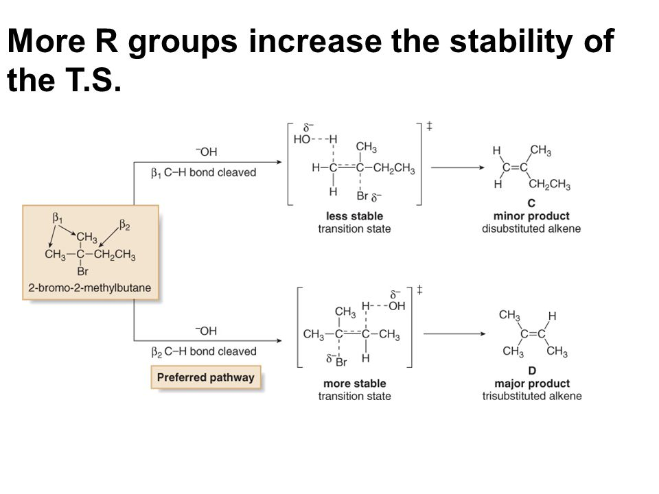 More R groups increase the stability of the T.S.