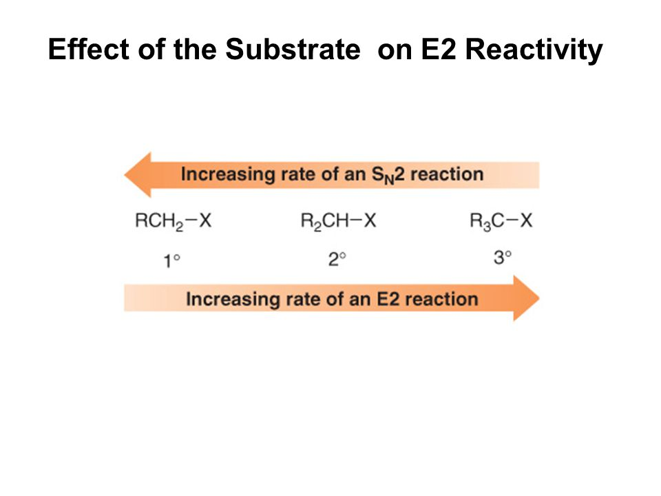 Effect of the Substrate on E2 Reactivity