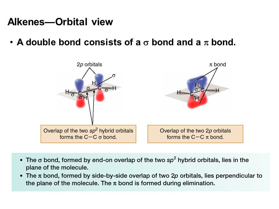 Alkenes—Orbital view A double bond consists of a  bond and a  bond.