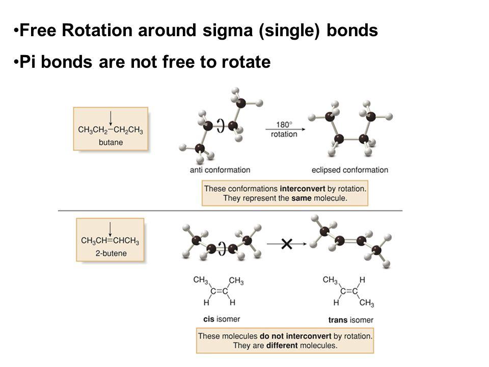 Free Rotation around sigma (single) bonds