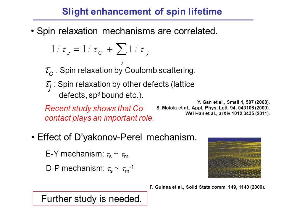 Slight enhancement of spin lifetime