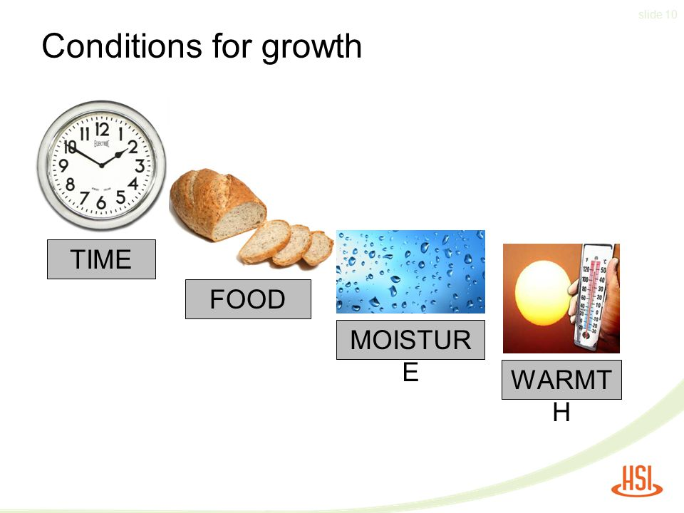 Conditions for growth TIME FOOD MOISTURE WARMTH