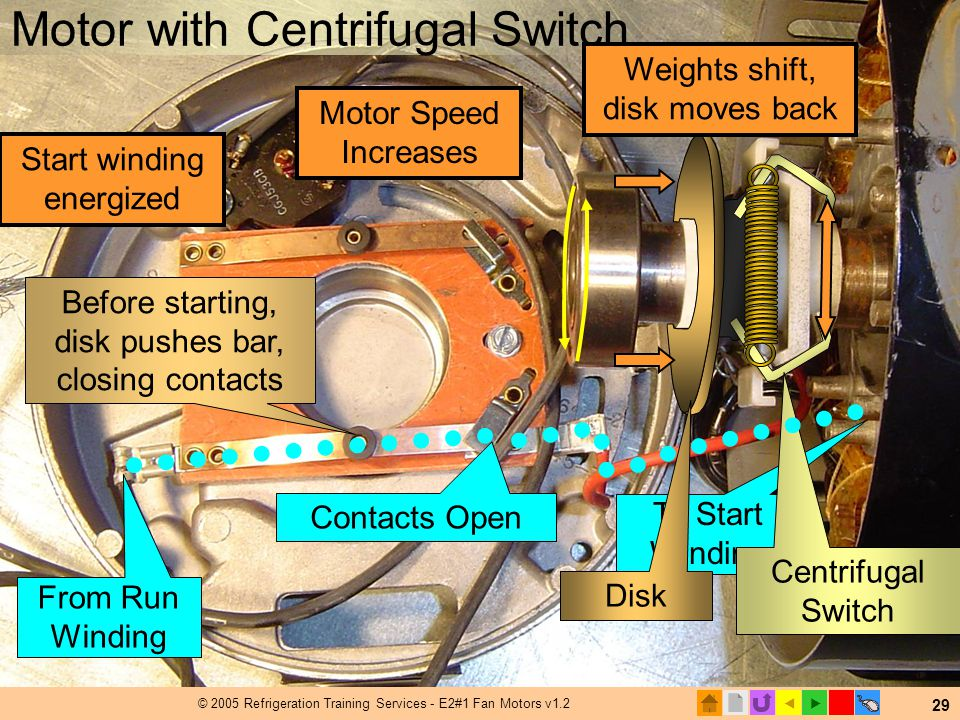 Motor with Centrifugal Switch
