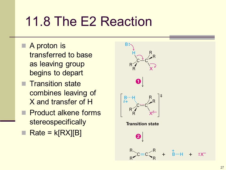 11.8 The E2 Reaction A proton is transferred to base as leaving group begins to depart. Transition state combines leaving of X and transfer of H.