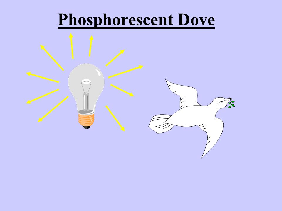 Phosphorescent Dove