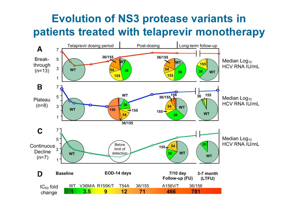 Evolution of NS3 protease variants in patients treated with telaprevir monotherapy