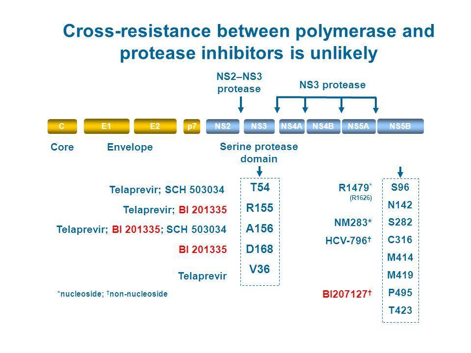 Serine protease domain