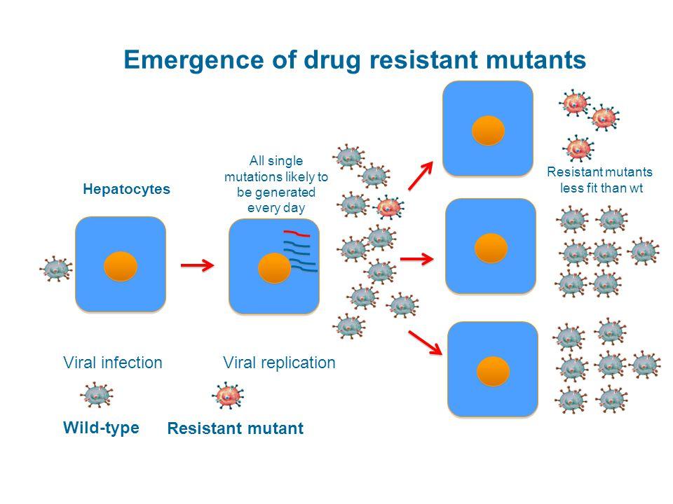Emergence of drug resistant mutants