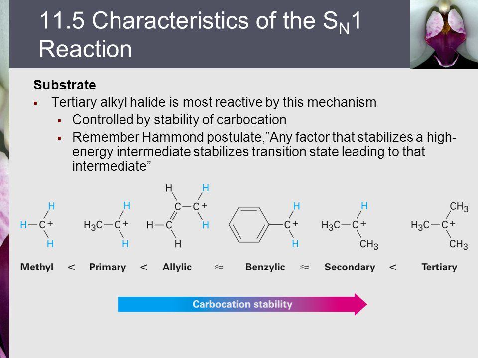 11.5 Characteristics of the SN1 Reaction
