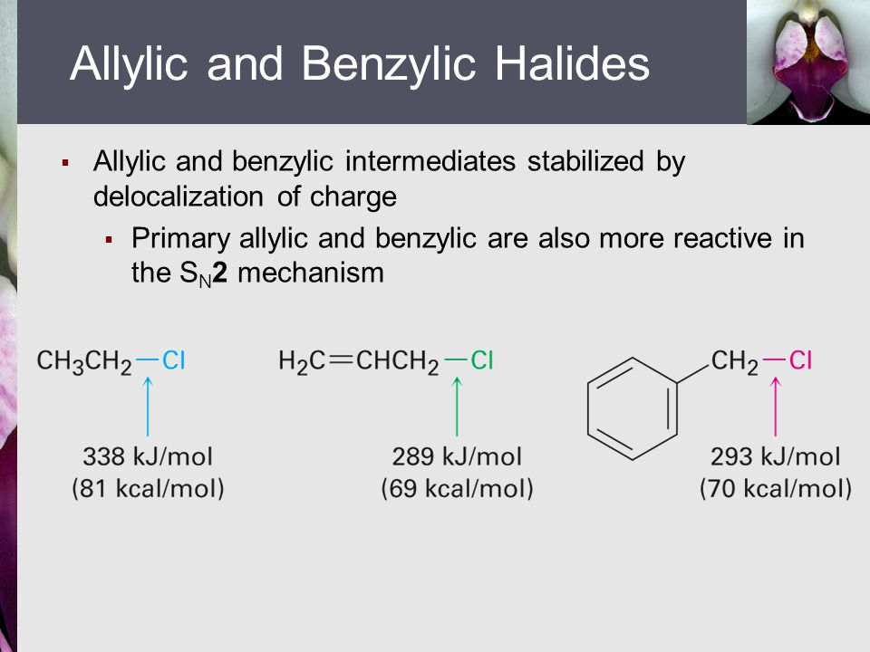 Allylic and Benzylic Halides