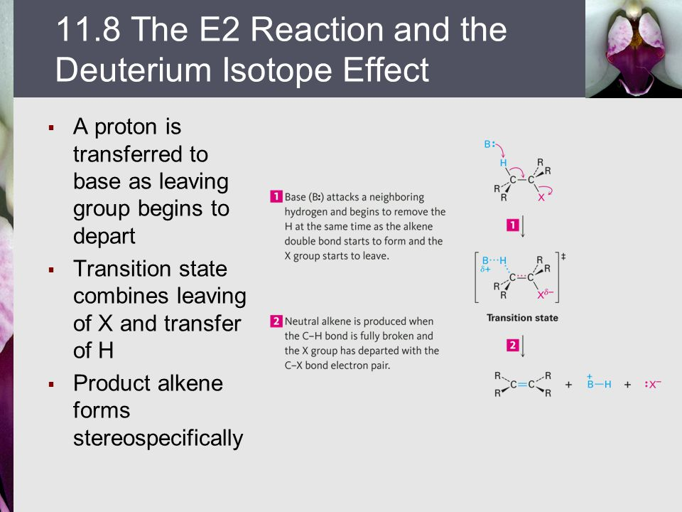 11.8 The E2 Reaction and the Deuterium Isotope Effect