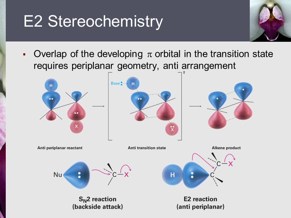 E2 Stereochemistry Overlap of the developing  orbital in the transition state requires periplanar geometry, anti arrangement.