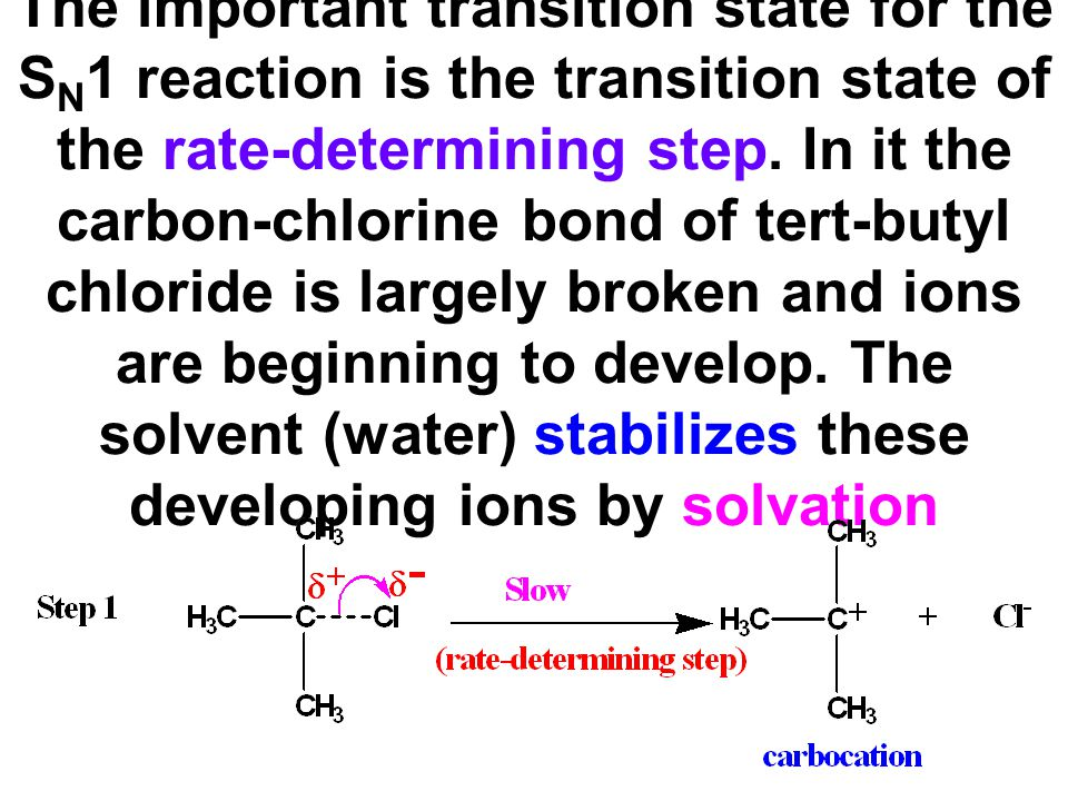 The important transition state for the SN1 reaction is the transition state of the rate-determining step.