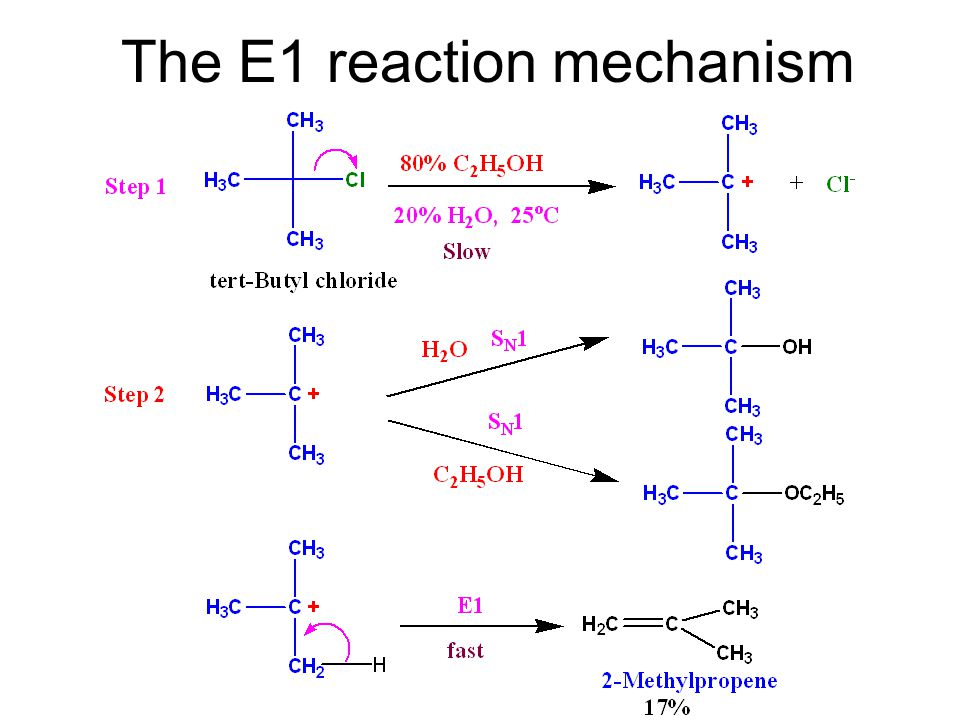 The E1 reaction mechanism