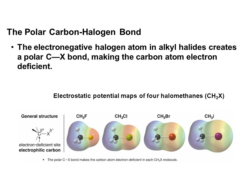 The Polar Carbon-Halogen Bond