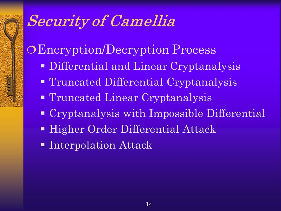 Security of Camellia Encryption/Decryption Process