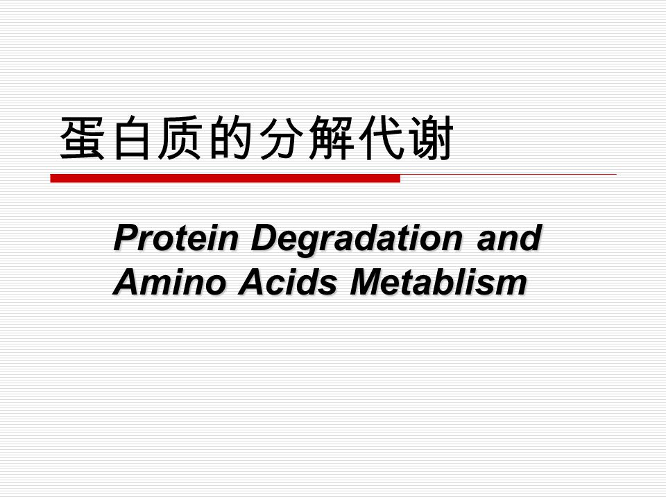 Protein Degradation and Amino Acids Metablism