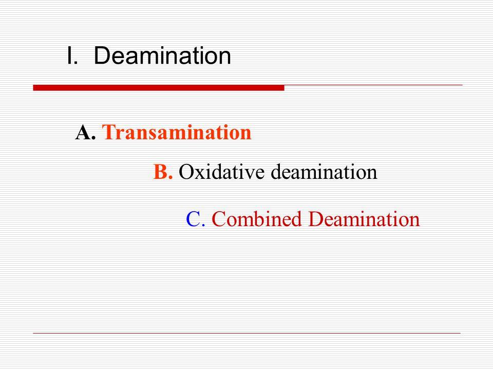 I. Deamination A. Transamination B. Oxidative deamination