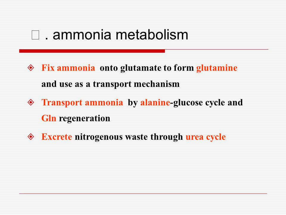 Ⅳ . ammonia metabolism Fix ammonia onto glutamate to form glutamine and use as a transport mechanism.