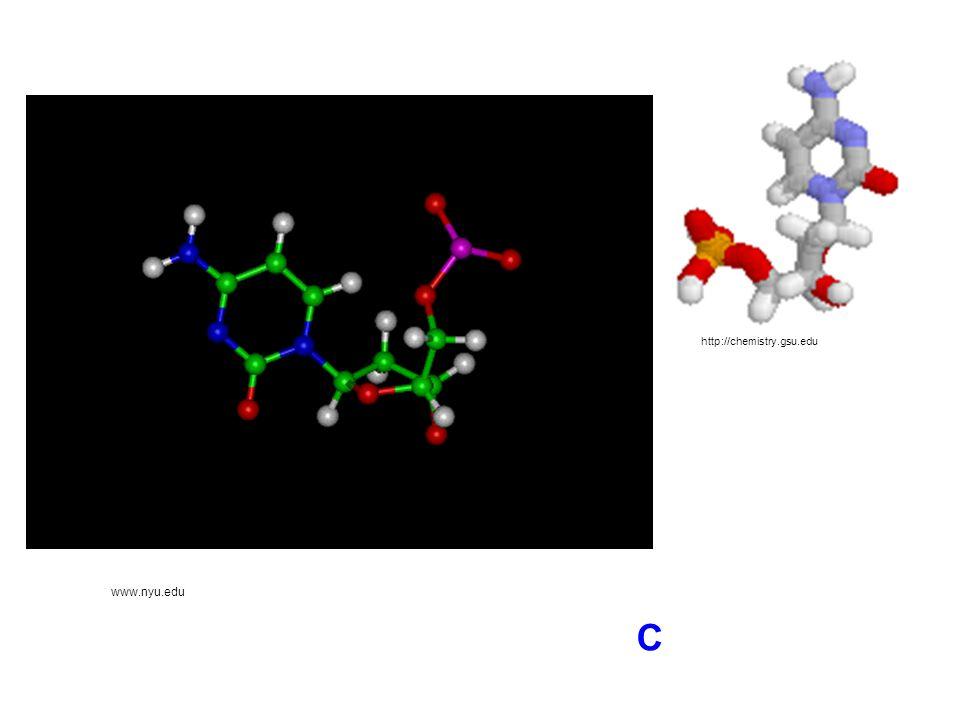 http://chemistry.gsu.edu www.nyu.edu C