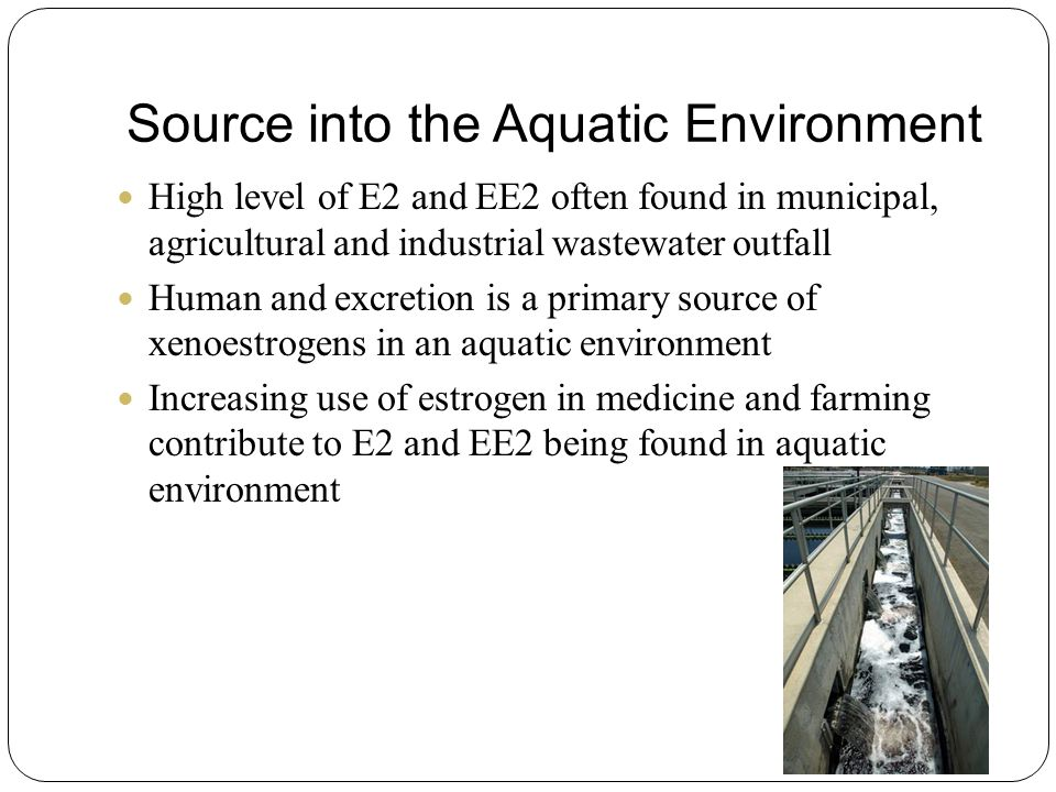 Source into the Aquatic Environment