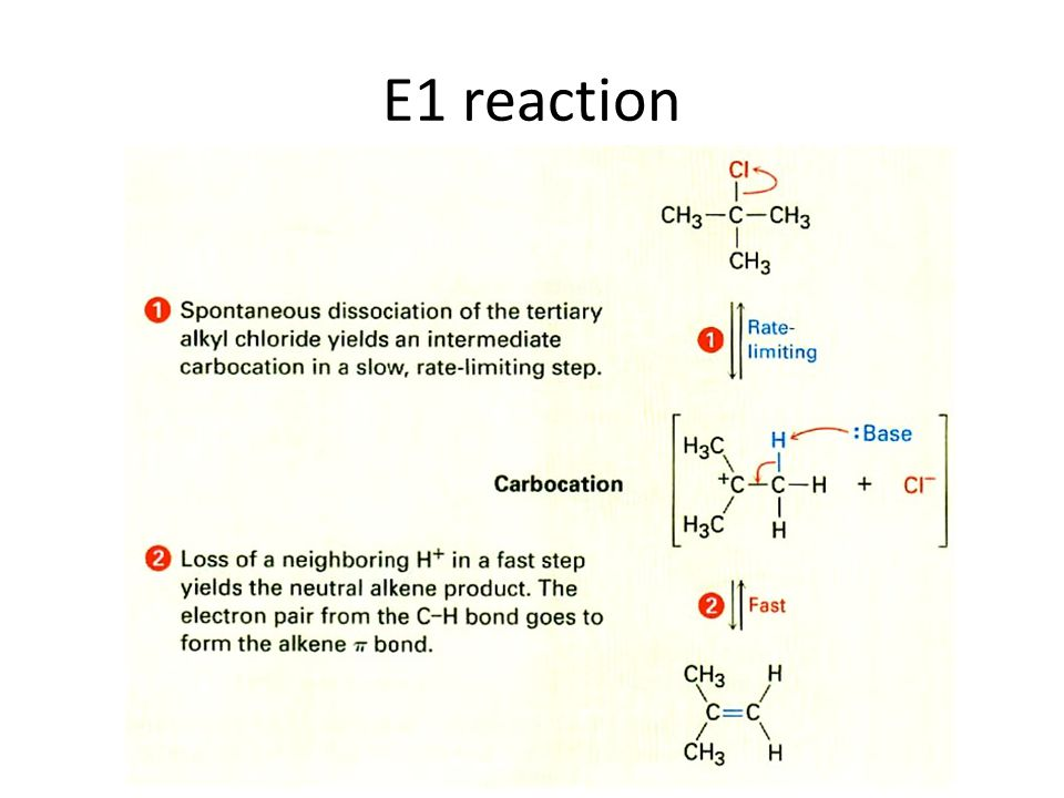 E1 reaction