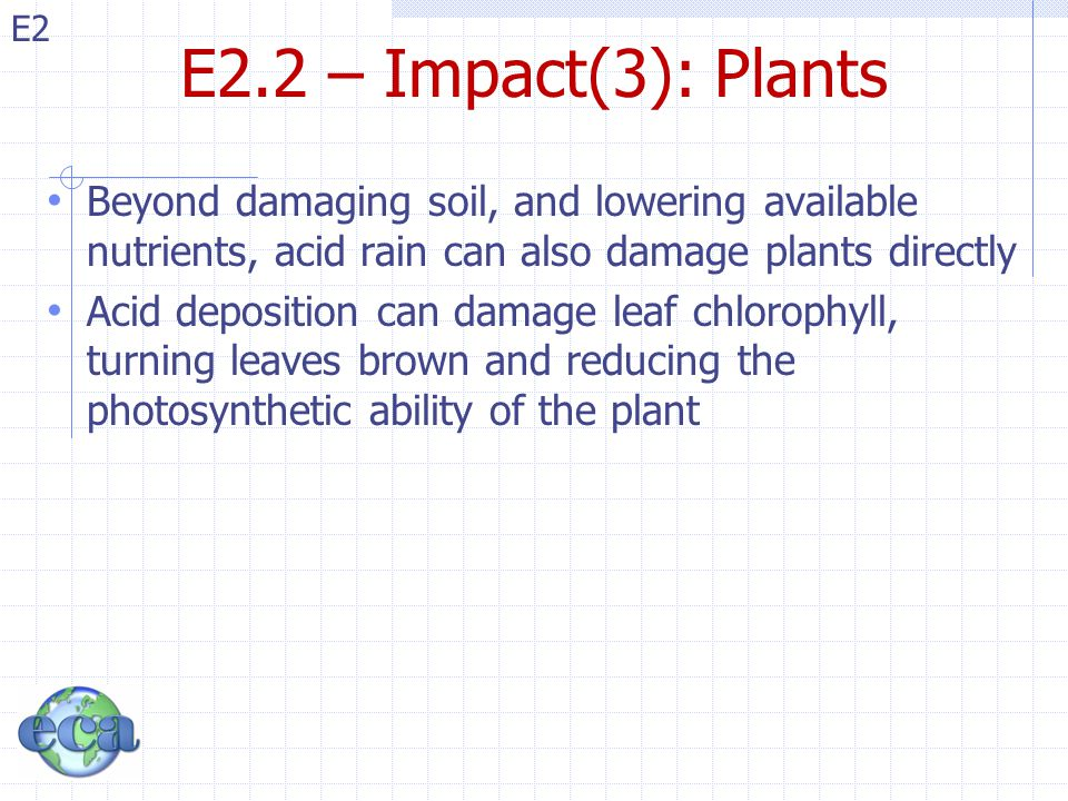 E2.2 – Impact(3): Plants Beyond damaging soil, and lowering available nutrients, acid rain can also damage plants directly.