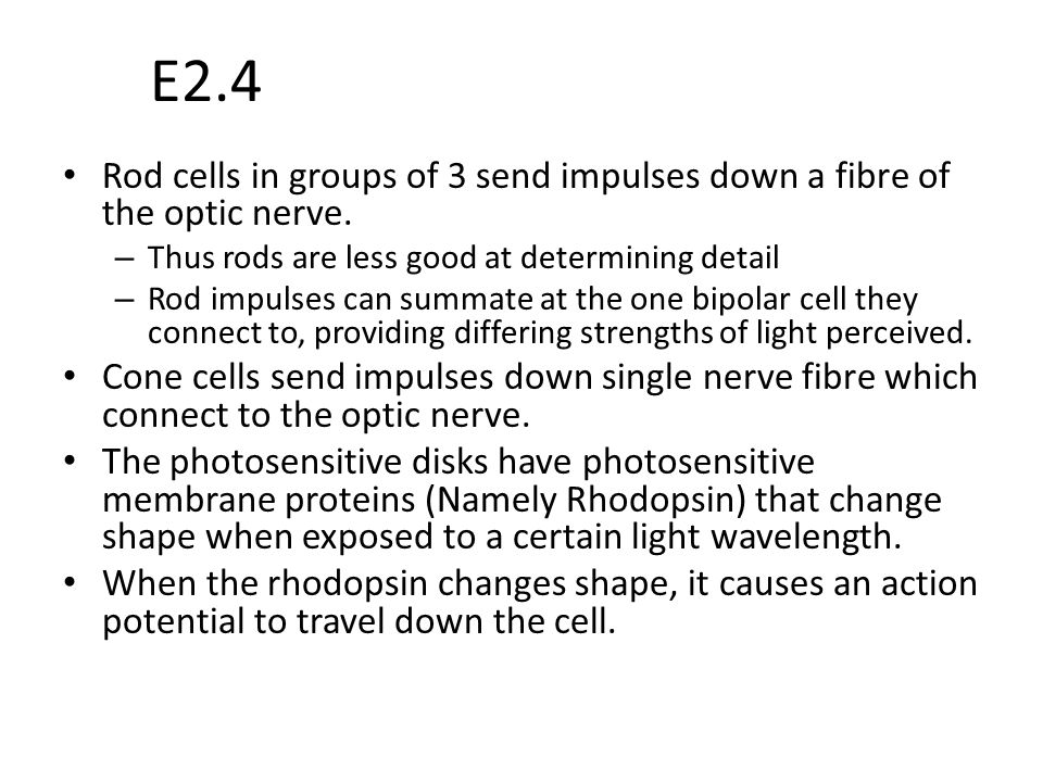 E2.4 Rod cells in groups of 3 send impulses down a fibre of the optic nerve. Thus rods are less good at determining detail.