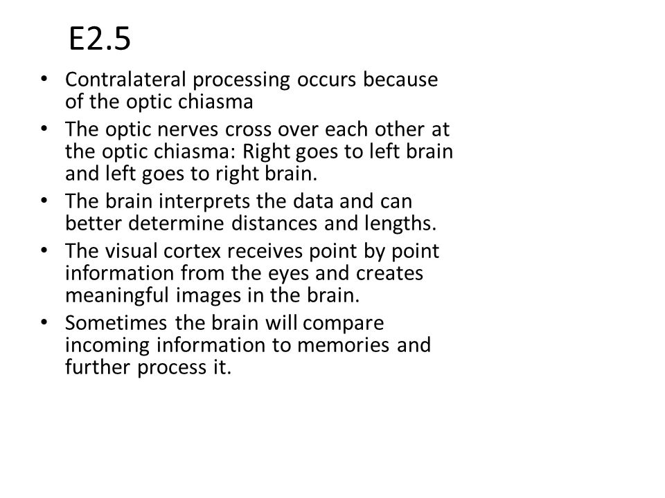 E2.5 Contralateral processing occurs because of the optic chiasma