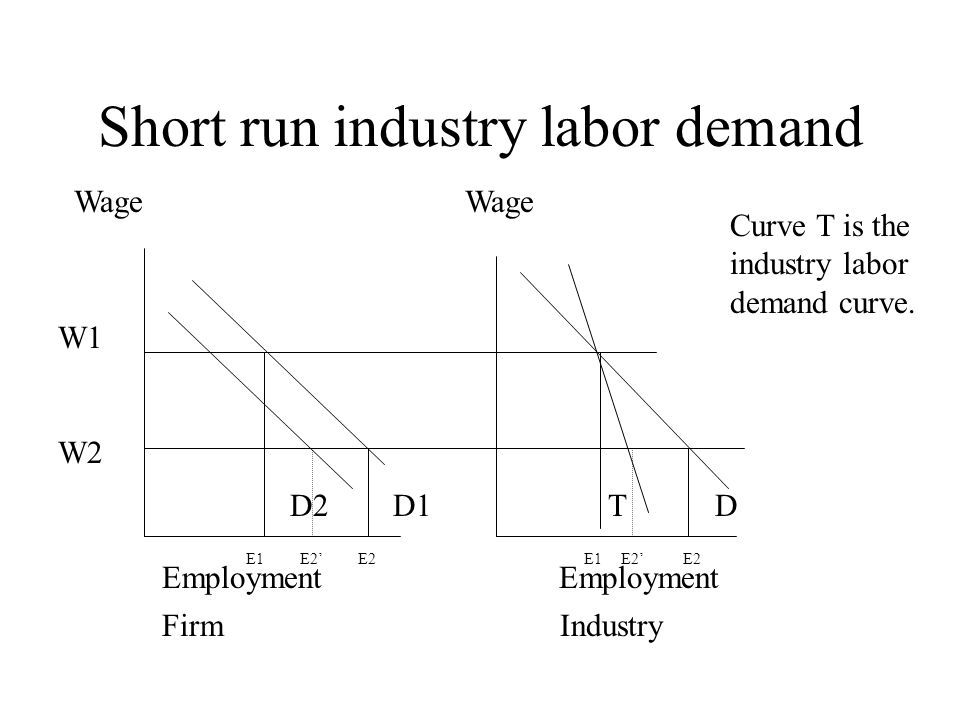 Short run industry labor demand