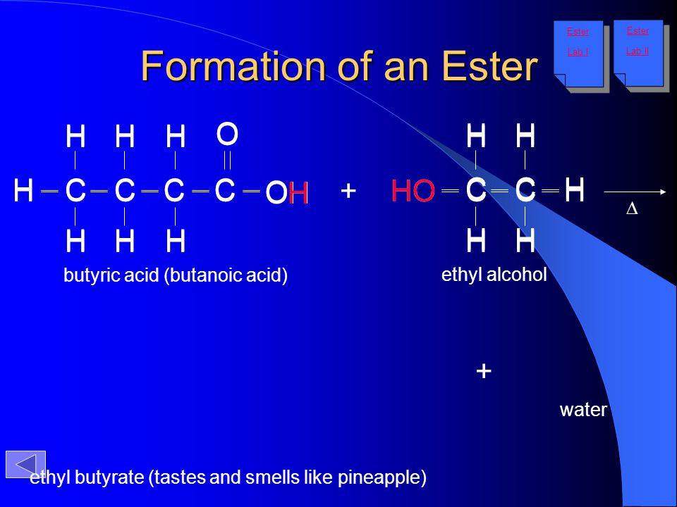 Formation of an Ester H O C H H H O H C H H H C C C C OH H + HO HO C C