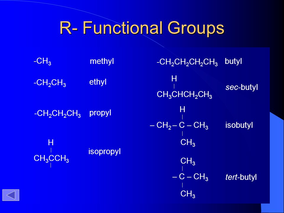 R- Functional Groups -CH3 methyl -CH2CH2CH2CH3 butyl CH3CHCH2CH3 H