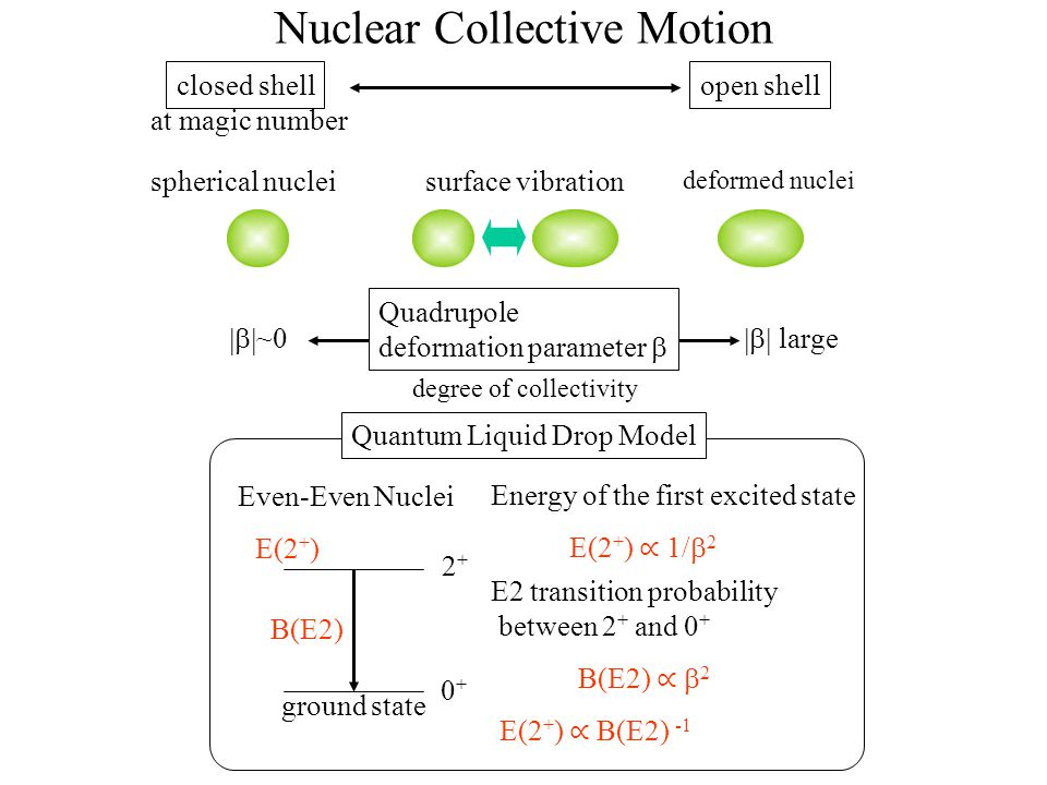 Nuclear Collective Motion