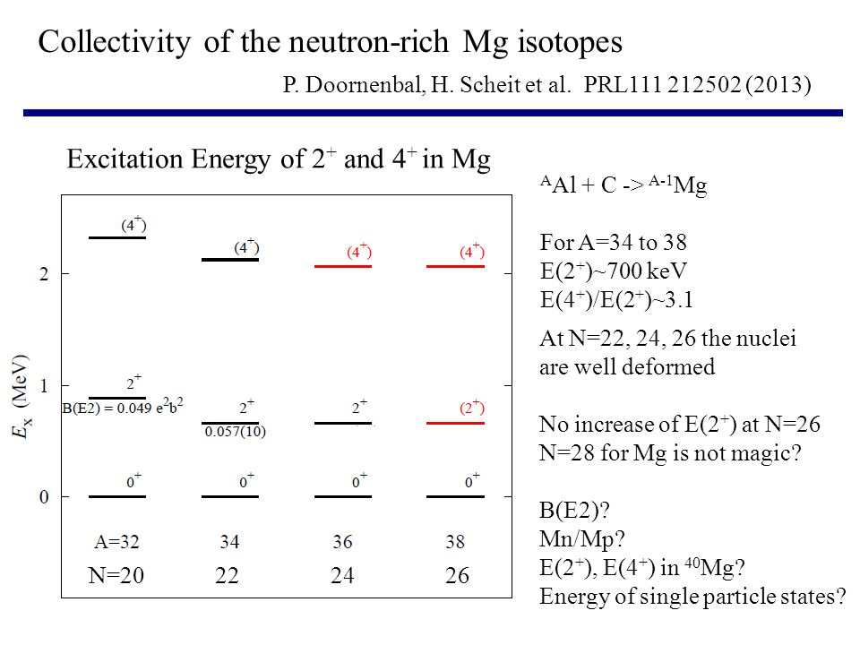 Collectivity of the neutron-rich Mg isotopes