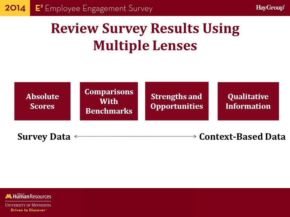 Review Survey Results Using Multiple Lenses
