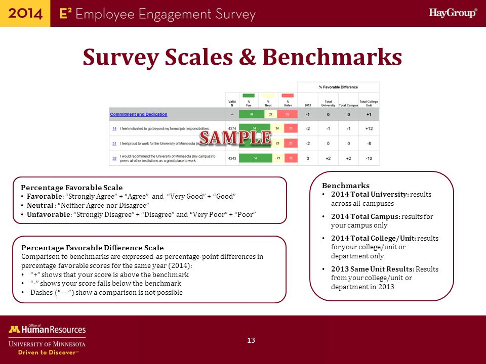 Survey Scales & Benchmarks