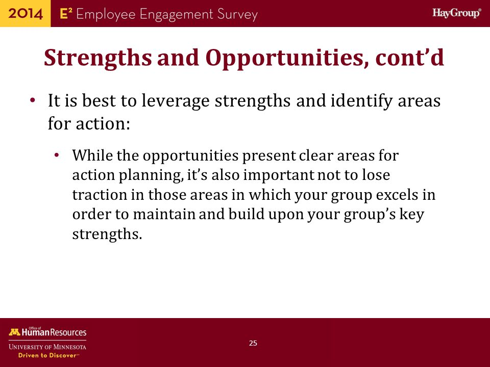 Strengths and Opportunities, cont'd