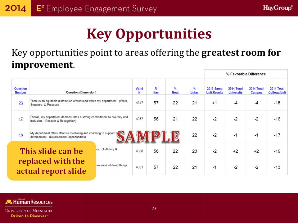 This slide can be replaced with the actual report slide
