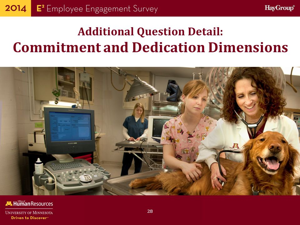 Additional Question Detail: Commitment and Dedication Dimensions