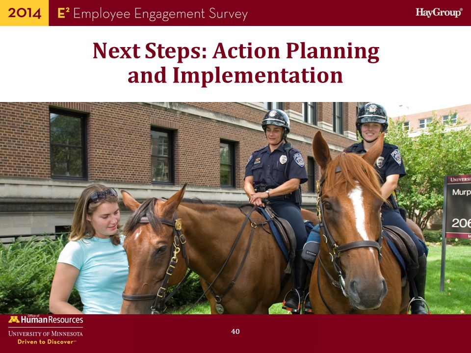 Next Steps: Action Planning and Implementation