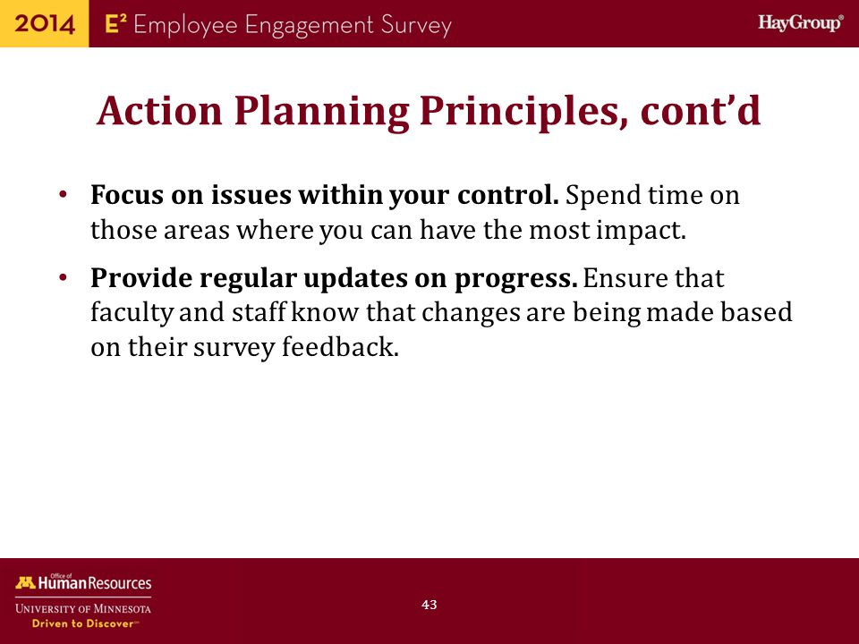 Action Planning Principles, cont'd