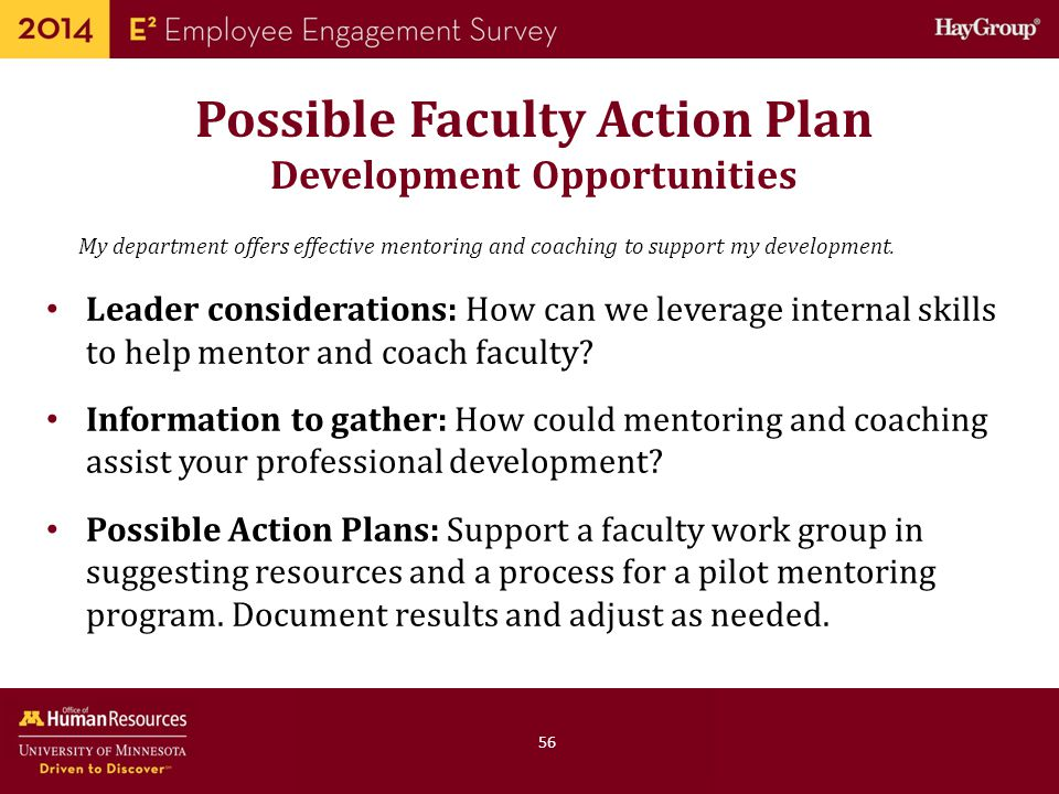 Possible Faculty Action Plan Development Opportunities