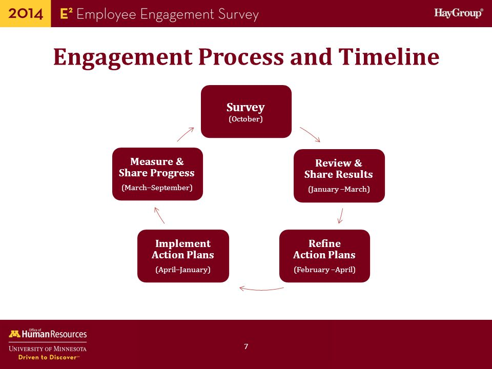 Engagement Process and Timeline