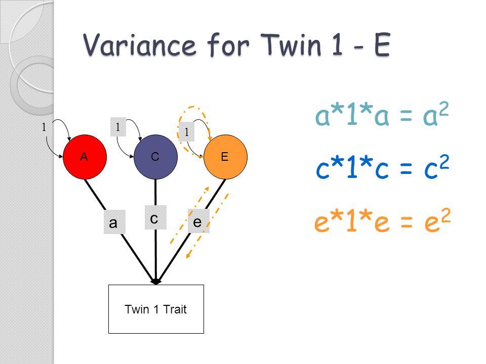 a*1*a = a2 c*1*c = c2 e*1*e = e2 Variance for Twin 1 - E c a e 1 1 1 A