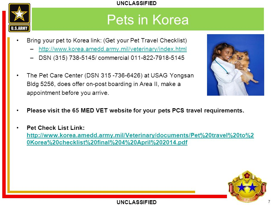Pets in Korea Bring your pet to Korea link: (Get your Pet Travel Checklist) http://www.korea.amedd.army.mil/veterinary/index.html.