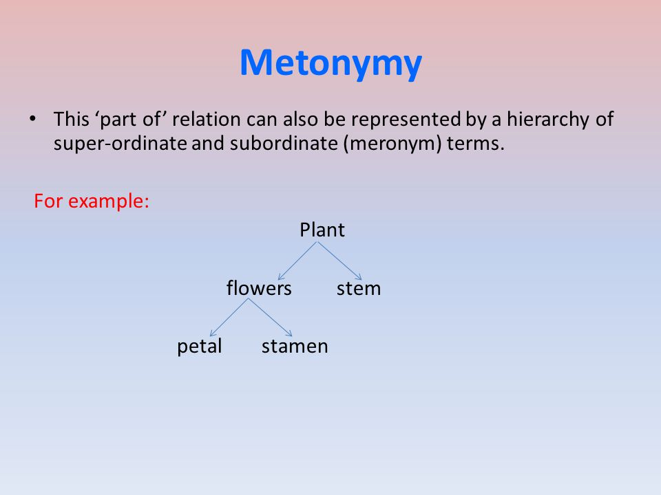 Metonymy This 'part of' relation can also be represented by a hierarchy of super-ordinate and subordinate (meronym) terms.