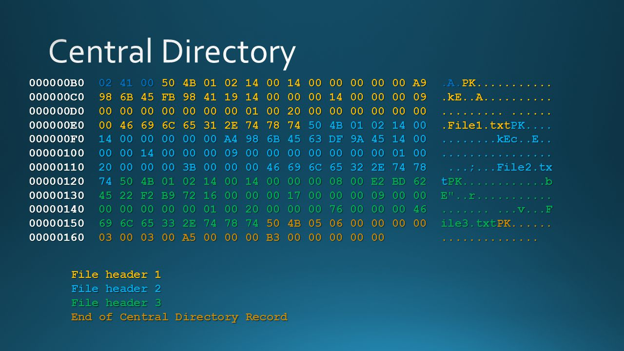 Central Directory 000000B0 02 41 00 50 4B 01 02 14 00 14 00 00 00 00 00 A9 .A.PK...........
