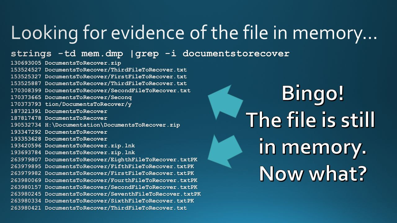 Looking for evidence of the file in memory…