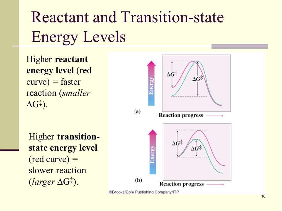 Reactant and Transition-state Energy Levels